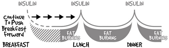 a chart showing how insulin stays low longer when you delay or skip breakfast